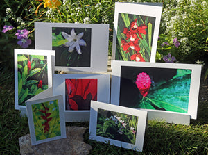 NestingCards - Tropical Impressions by Peg Owens