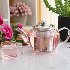 Glass With Stainless Steel Infuser Strainer Heat Resistant Teapot