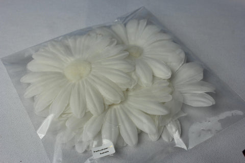 Large Vintage Daisy 5396
