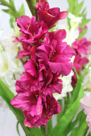 Gladiolus Spray Fuschia 3052