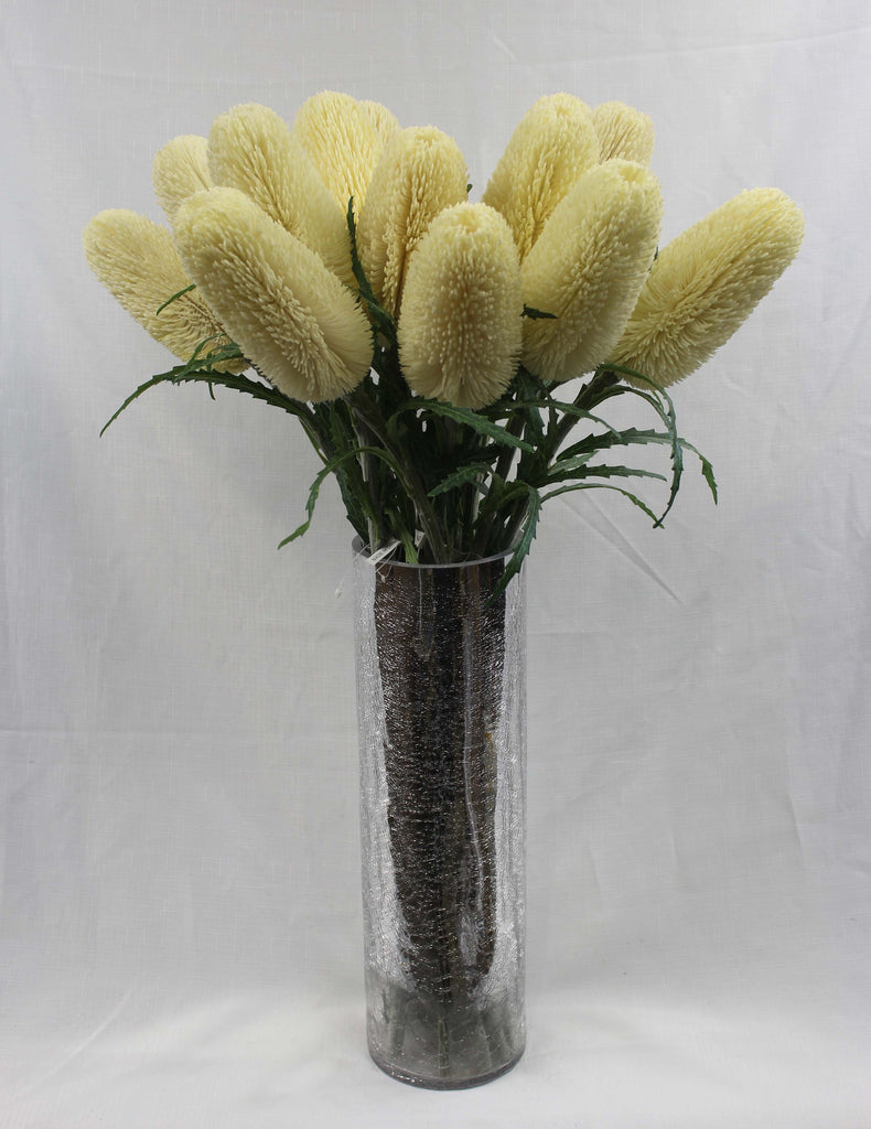 Large Ivory Banksia Stem 5285