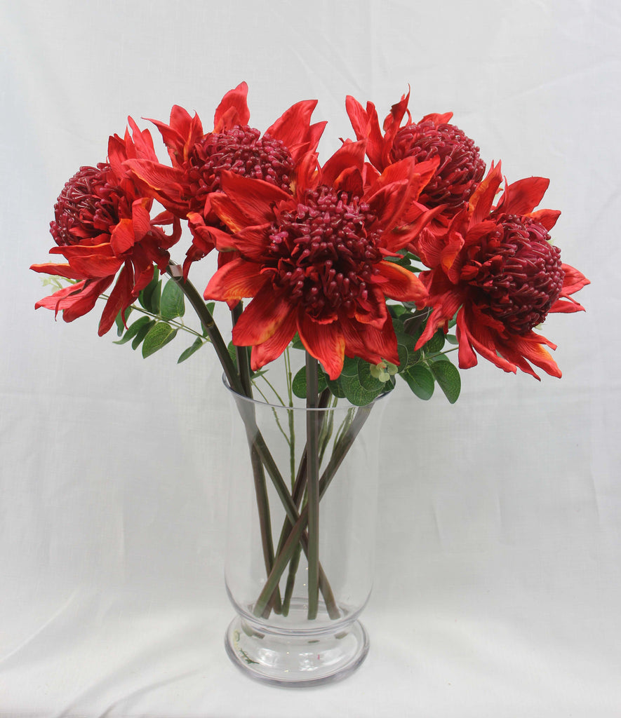 Small Red Waratah (no leaves) 5280