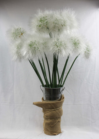 Giant Dandelion Flower