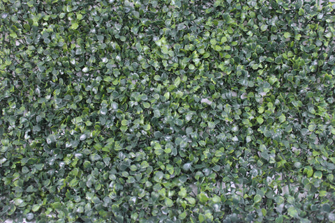 Boxwood Foliage Hedge Tile