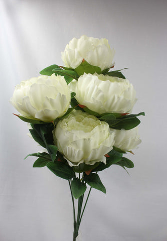 Large Peony Cluster