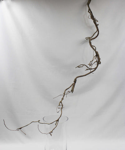 branch arrangeable brown  (no foliage) 5216