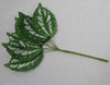 Variegated Rough Edged Leaves (spray of 8 leaves) 1111