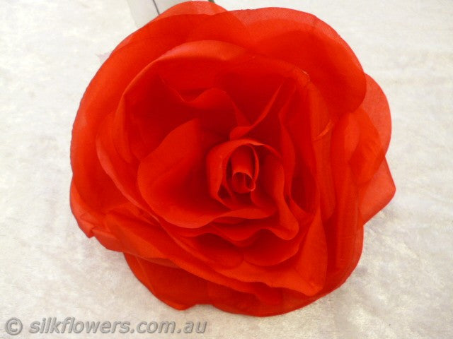 Rose spanish red silk 15cm 1914