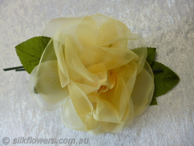 Rose yellow 12cm 1978