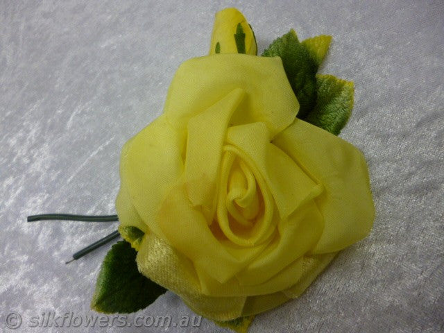 Rose yellow 10cm 1984