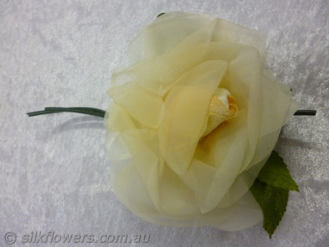 Rose Vintage Lemon
