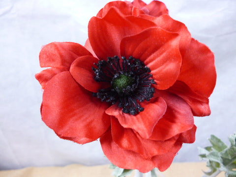 Poppy red single on stem 5436