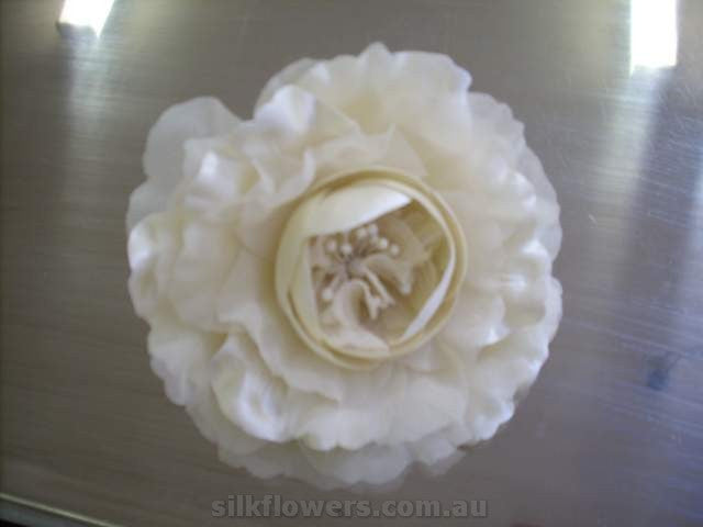 Cabbage Rose