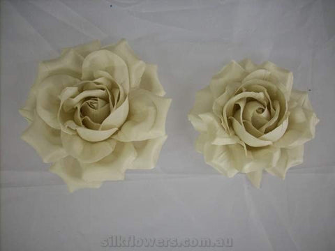 Beautiful Roses Duo