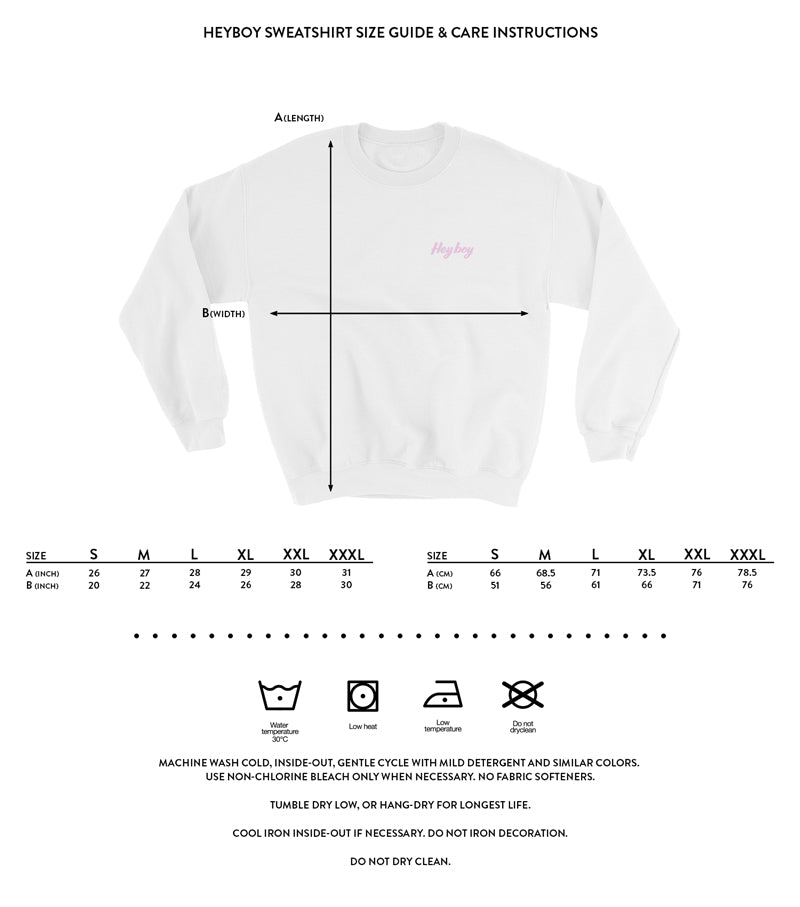 Heyboy Gay Sweatshirt size and care