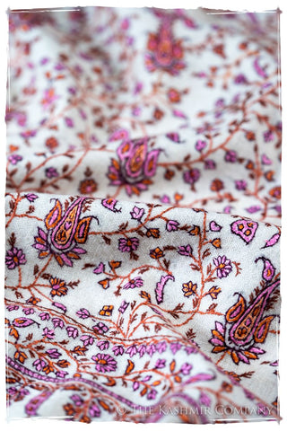 The Willow La Belle Rosé - Grand Pashmina Shawl