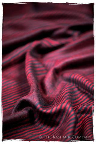 The Wilson - Handloom Pashmina Cashmere Scarf