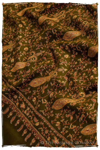 Collector's Edition Shawls