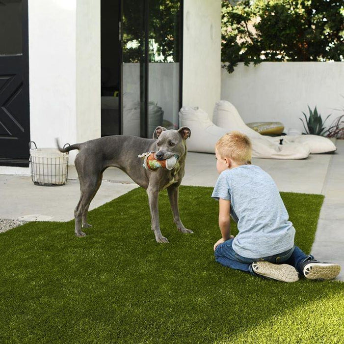 K9Grass Classic Artificial Grass for Dogs