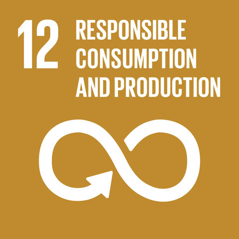 Vain Dane Athletic Global Goals no 12 responsible consumption and production