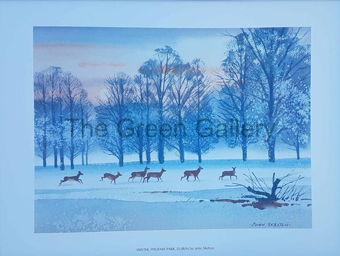Deer, Phoenix Park by John Skelton