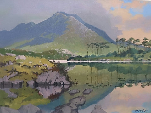 Green Piece Derry Clare Lough Cuna Mara by John F. Skelton - Green Gallery
