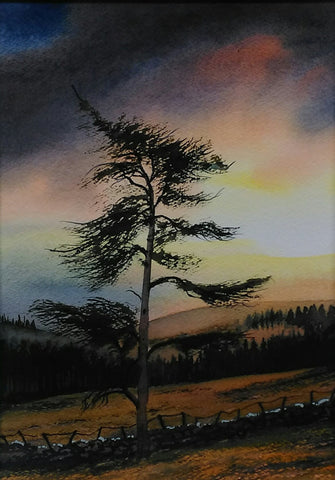 Wicklow Sunset - Green Gallery