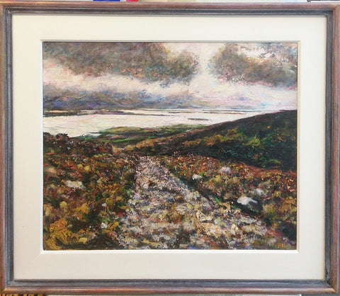 Mountain Road Kerry by Diarmuid Boyd - Green Gallery