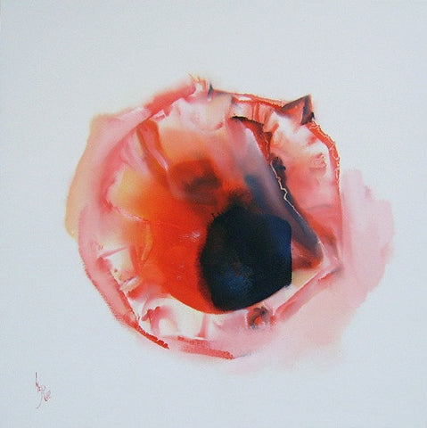 Small Red Poppy by Paul McRae - Green Gallery