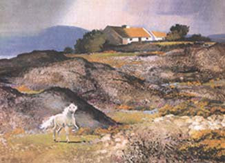 Connemara Spring by John Skelton - Green Gallery