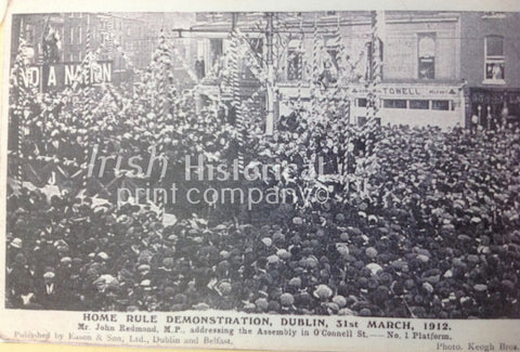 Home Rule Demonstration, Dublin, 31st March 1912 - Green Gallery