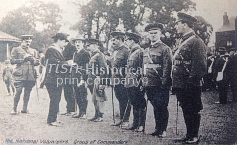 The National Volunteers. Group of Commanders - Green Gallery