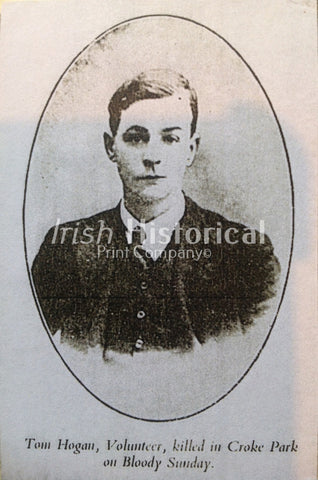 Tom Hogan, Volunteer, Killed in Croke Park on Bloody Sunday - Green Gallery