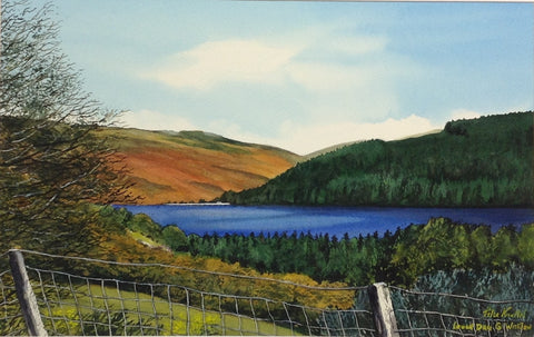 Lough Dan, Co. Wicklow - Green Gallery