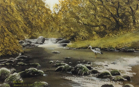Avonmore River. Laragh, Co. Wicklow by Peter Knuttel