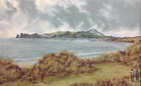 Ireland's Eye from Donabate - Green Gallery