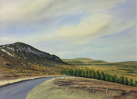 The Military Road, Co. Wicklow - Green Gallery
