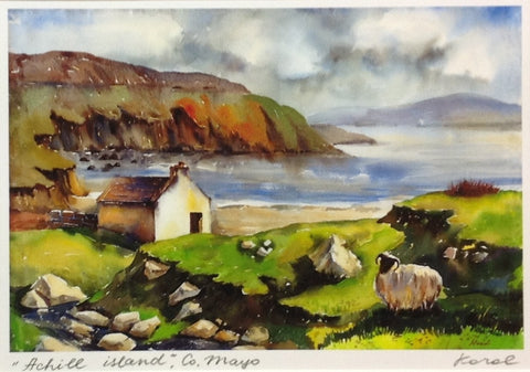 Wild Sheep, Achill Island, Co. Mayo - Green Gallery