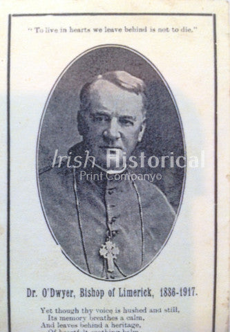 Dr. Dwyer, Bishop of Limerick 1986-1917 - Green Gallery