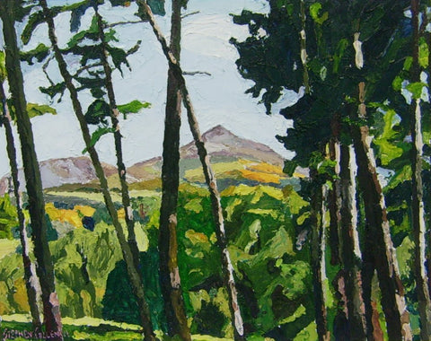 View of the Sugarloaf from Powerscourt Gardens by Stephen Cullen - Green Gallery