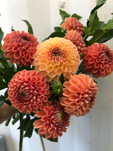 Load image into Gallery viewer, Fall Workshop - Beginner Flower Arranging