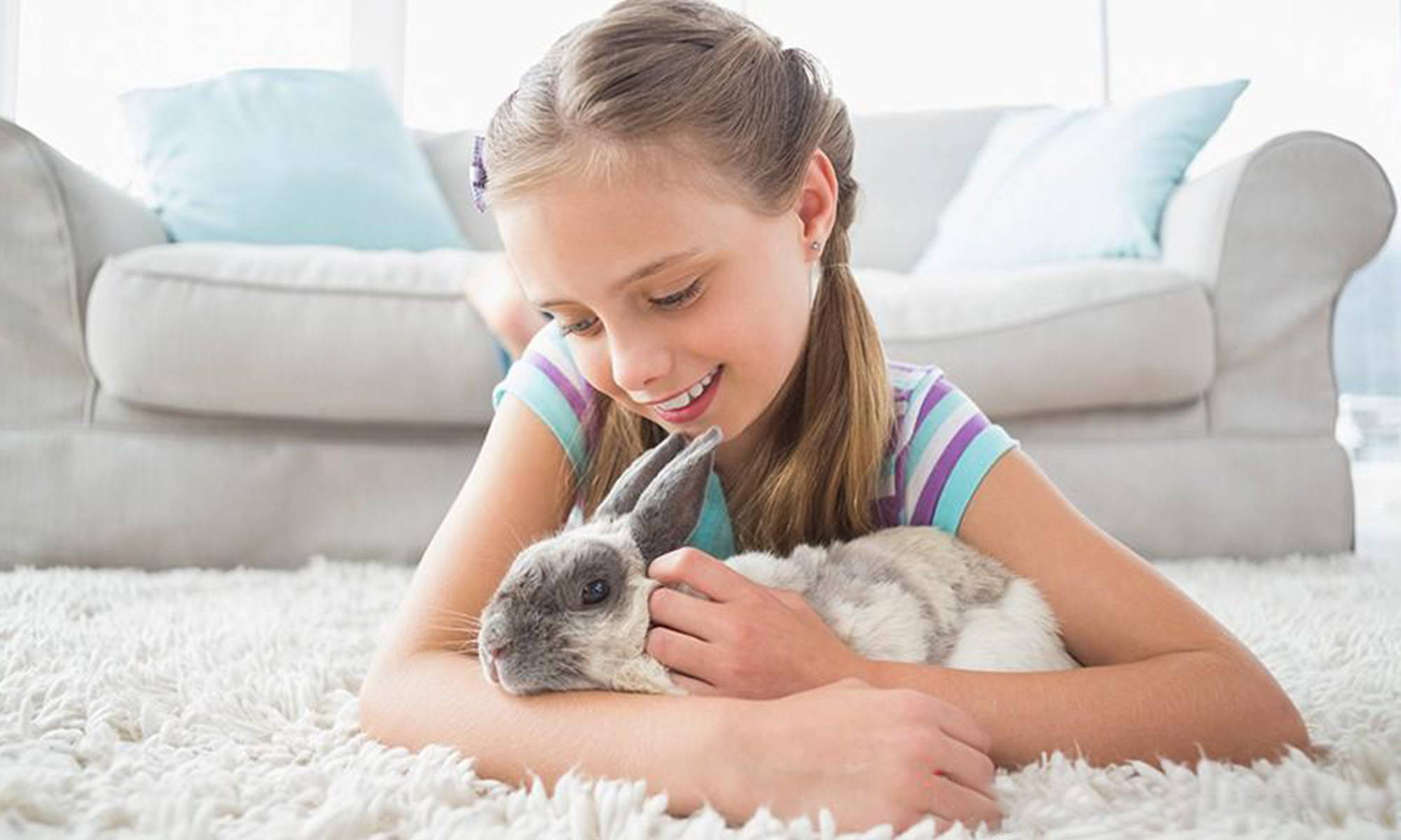 How to Take Care of a Baby Bunny
