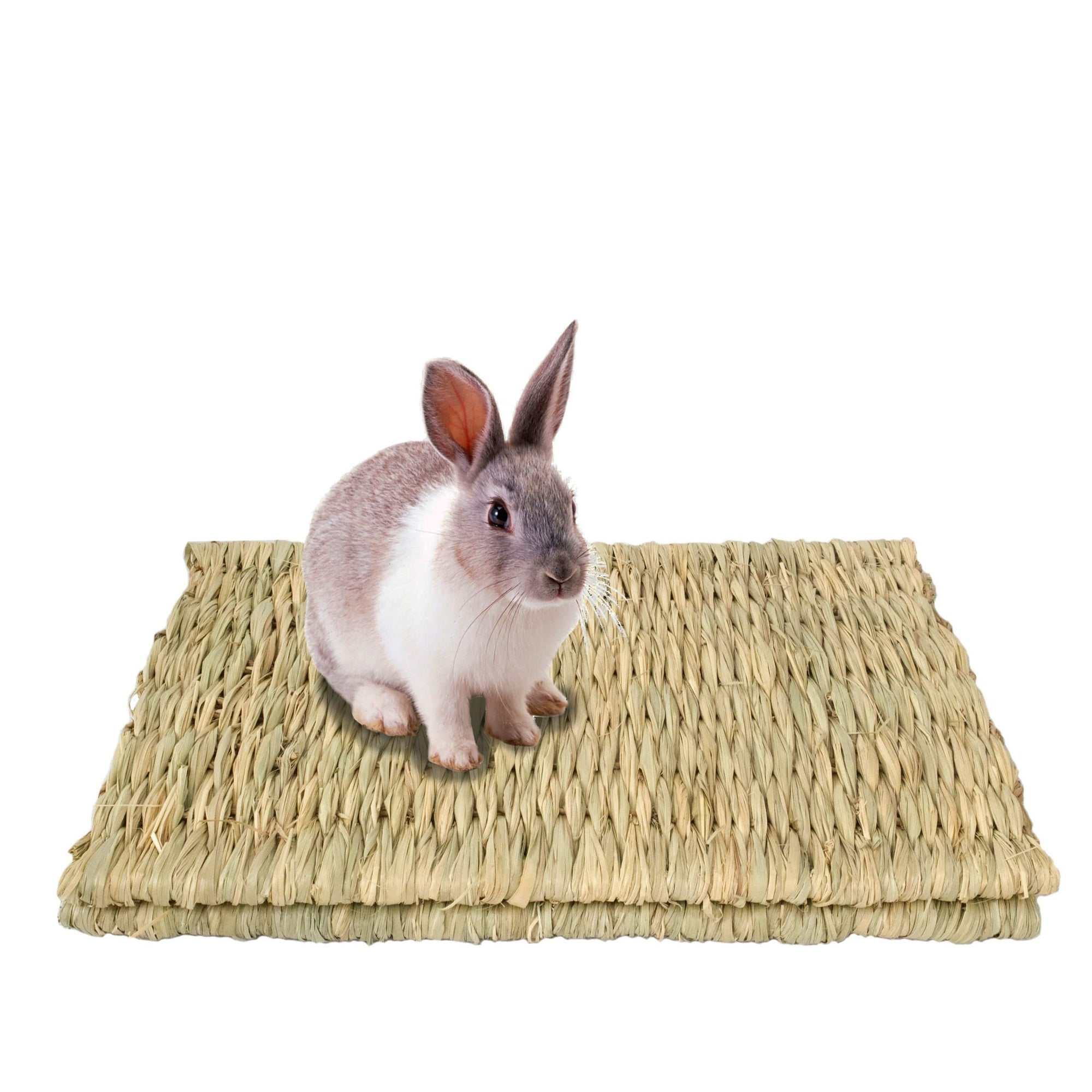 Made Terra Pet Mat Seagrass Pet Mats (Large) | For Small Pets & Protect Paws from Wire Cage