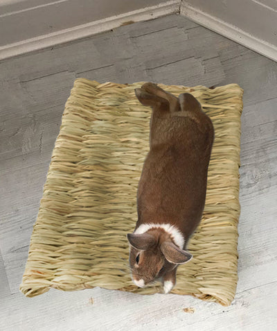 Made Terra Pet Mat Seagrass Pet Mats (Small) | Protect Paws from Wire Cages for Small Pets