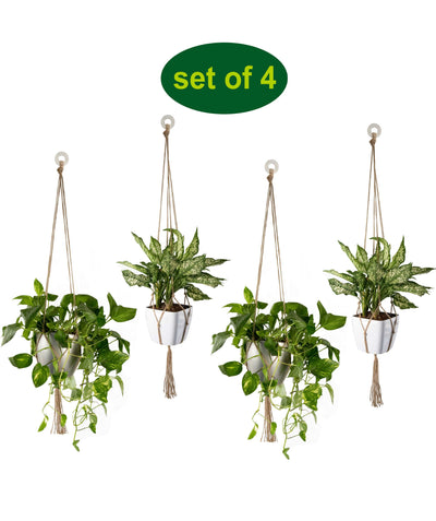 Made Terra Planter Hanger 4 Pack Jute Straw Macrame Planter Hanger | Hanging Planter Rope (47 Inch, 4 Legs)