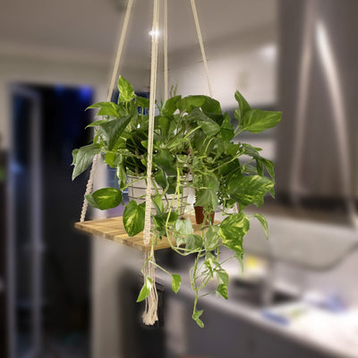 Made Terra Planter Hanger Macrame Plant Hangers Shelf | l Hanging Planter for Boho Home Decor