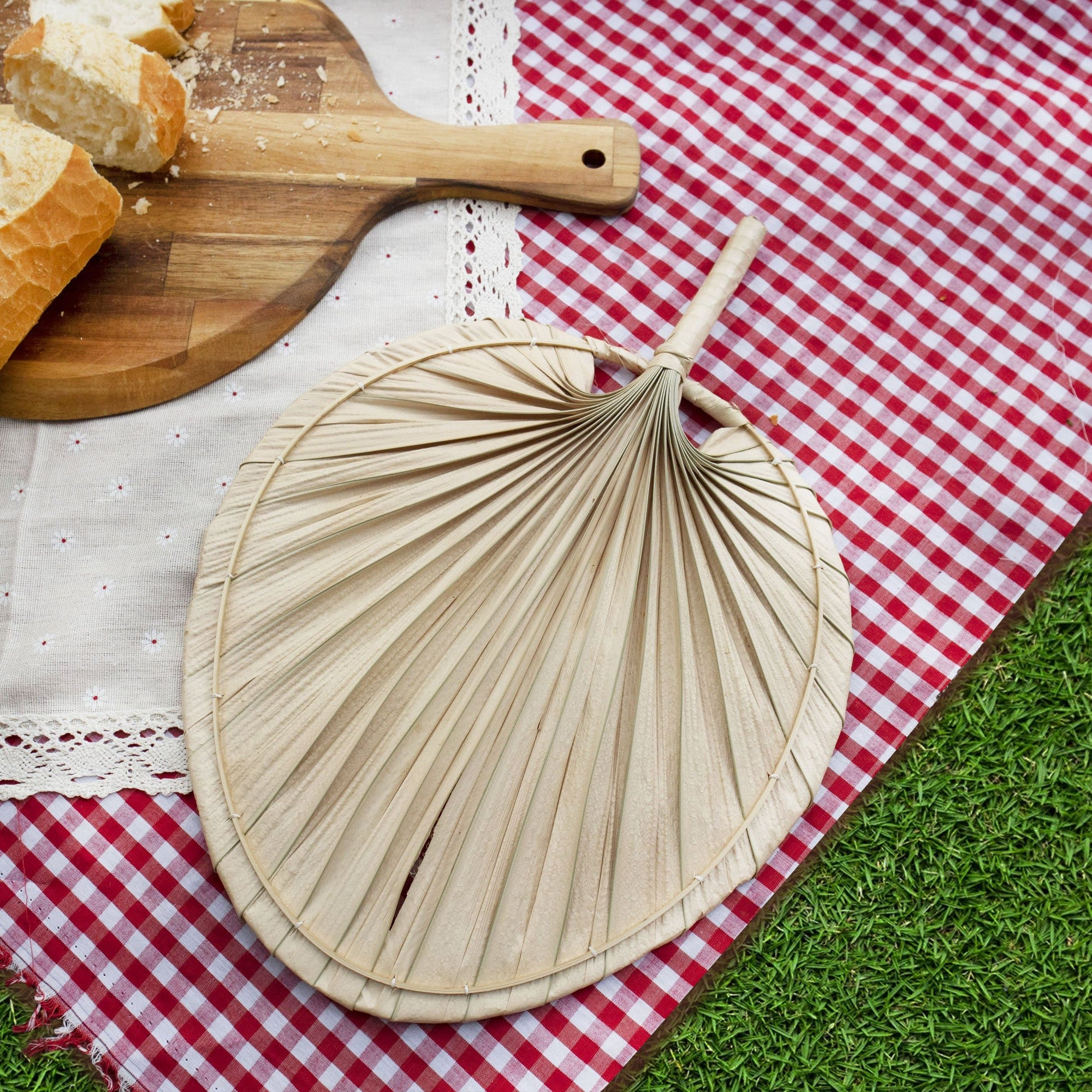 Palm Leaf Hand Fan And Wall Decor Beautiful Wall Art For Apartment Made Terra