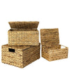 Made Terra Wicker Basket Water Hyacinth Wicker Lidded Storage Baskets (Set 3) | Baskets for Shelves w Lids & Insert Handles