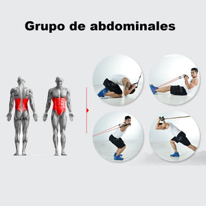 "Bandas de resistencia ""Ultimate Workout Set"""