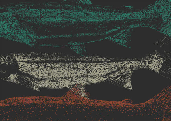 Topographic Trout T-Shirt